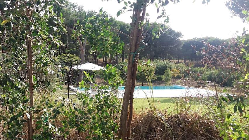 Casa Rio da Prata - Estúdio I