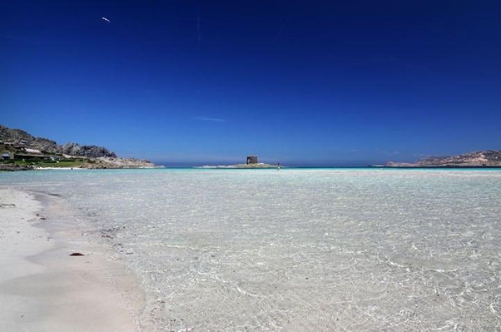 Caribbean ... in Sardinia : house on Pelosa beach