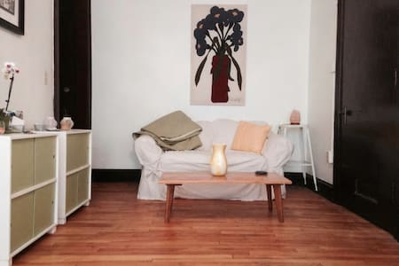 Cozy Grand Avenue Apartment - Saint Paul - Daire