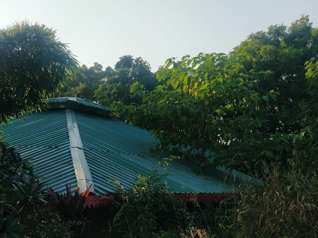 The Royal Stay (Farm House Vila)