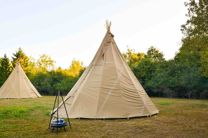 Alpaca My Tipi - 2 Glamping Tipis exclusive  field