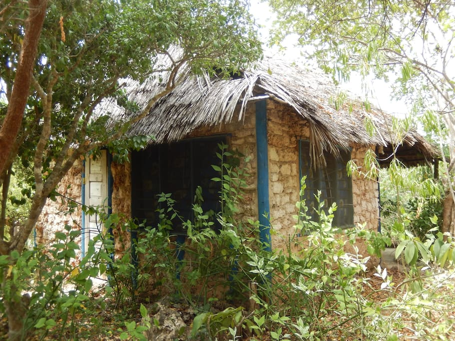 Rear View of Blue Monkey Beach Cottage for 3