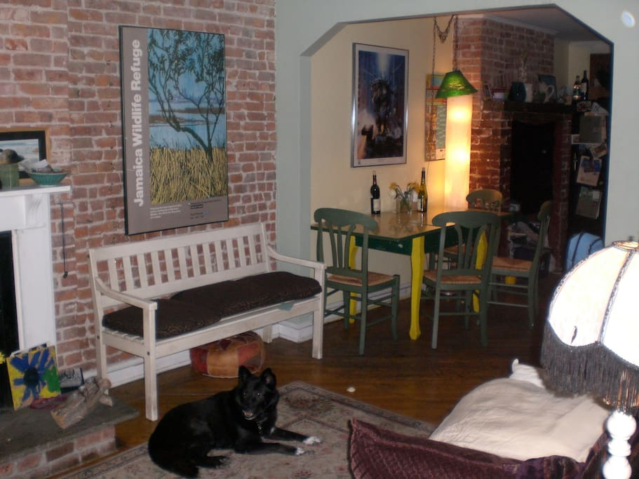 Living room into kitchen area with doggie