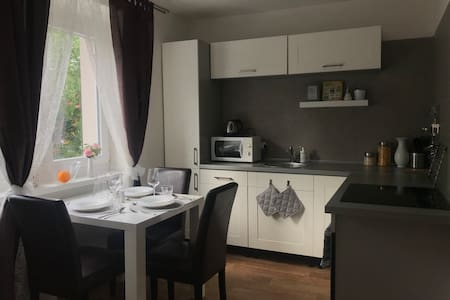 Comfy&Elegance, Apartment in Teplice Centre