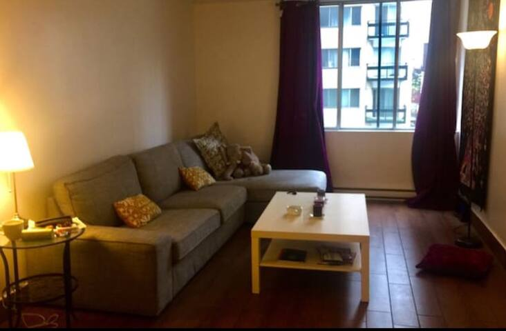 Cozy appartement in DT Montreal - Montreal - Apartamento