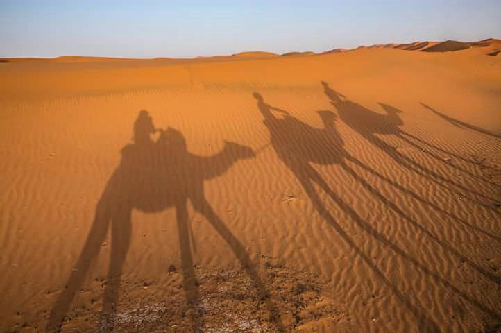 Bivouac and Camel trek with Sahara Peace