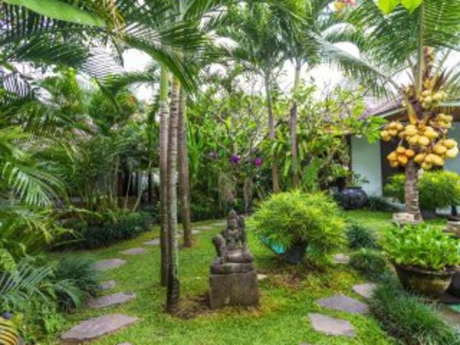 Pathway to Garden Suite
