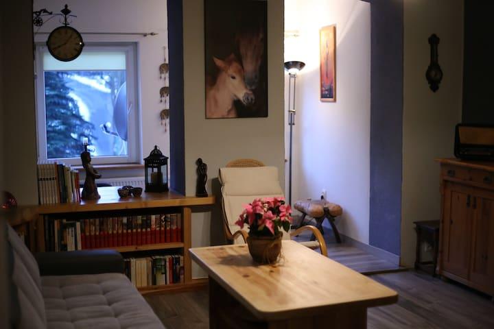 Przytulny i wygodny apartament w centrum Karpacza - Karpacz - Appartement