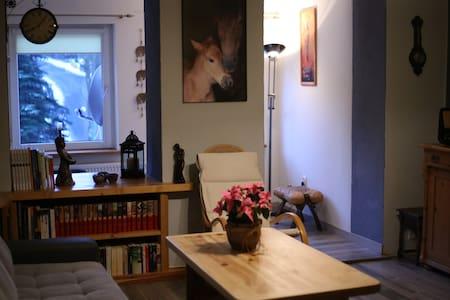 Przytulny i wygodny apartament w centrum Karpacza - Karpacz - Flat
