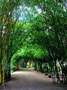 Casa con corredor y areas verdes