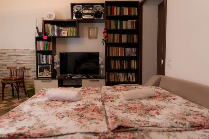 Guest House Melissa  N3/ Family room