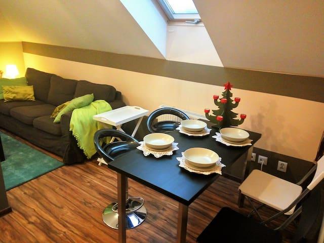 Apartament Bieszczadzkie Klimaty - Ustrzyki Dolne - Apartment
