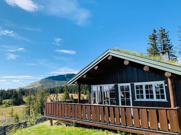 Trivelig oppgradert hytte med anneks til leie