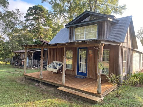 Cabin in the Pineywoods