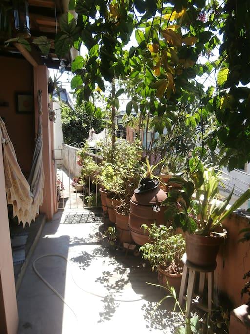 Área externa com sol, churrasqueira e rede