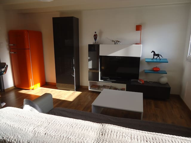 Charmant Duplex centre ville piéton avec parking - Quimper - Apartament