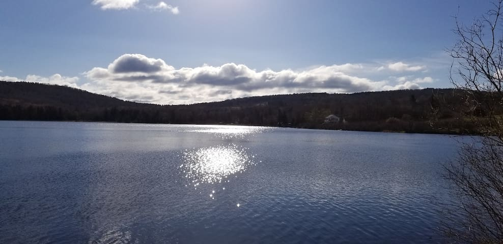Star Lake, first shot of this year after it finally thawed - in June!