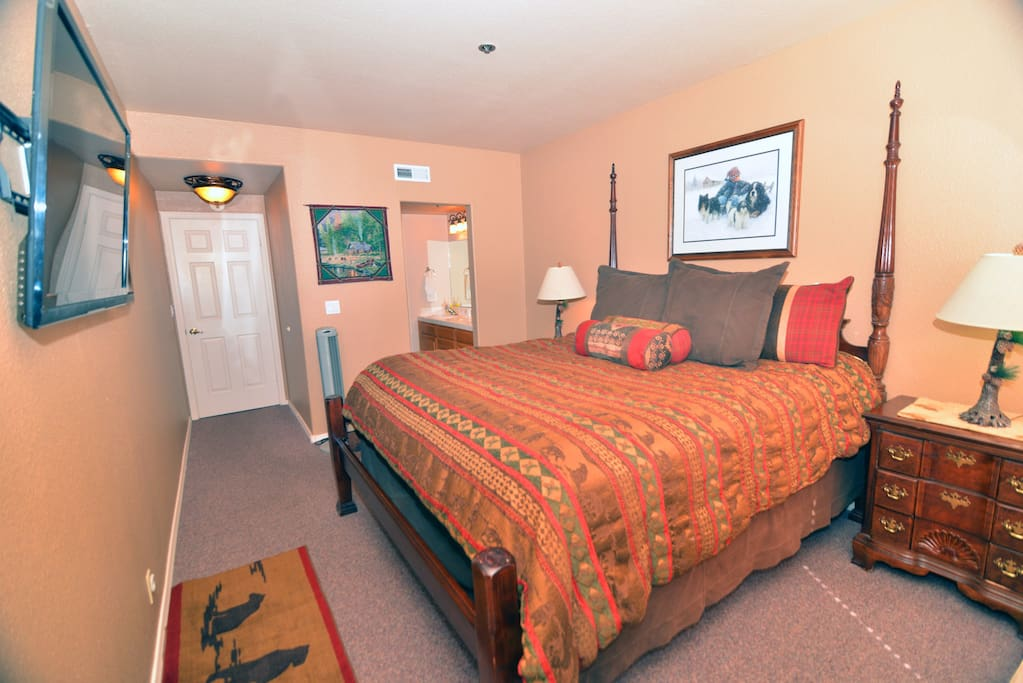 Master Bedroom with large closet, TV and private bath.