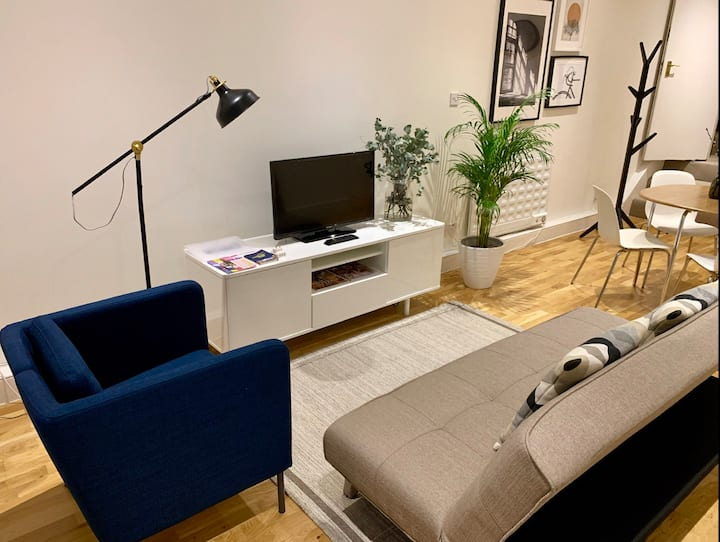 Stylish Great located apt in central london/zone 1
