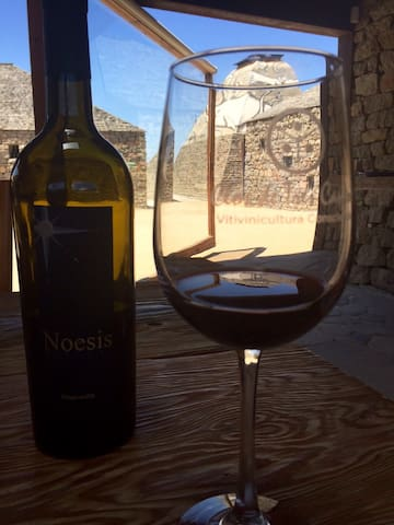 """Wine tasting at a special winery in the """"Valley de Vino's"""""""