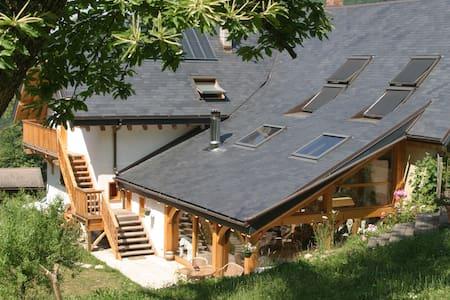 Grande maison isolée en pleine nature - Cusy - House