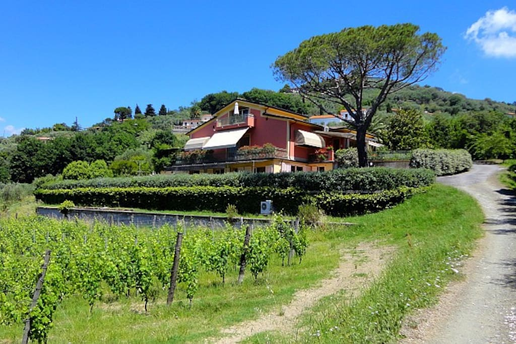 Apartments Montemare, Castelnuovo Magra, Liguria - NORTHITALY VILLAS Vacation Rentals