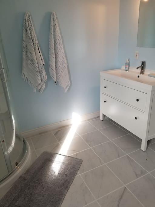 Renovated Bathroom (main floor)