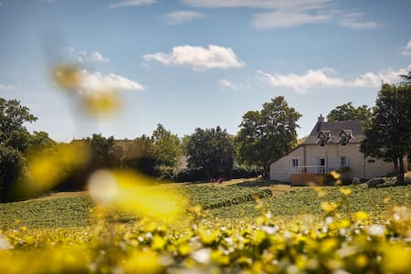 Your House in the Heart of the Vineyards - Mercurey - Дом