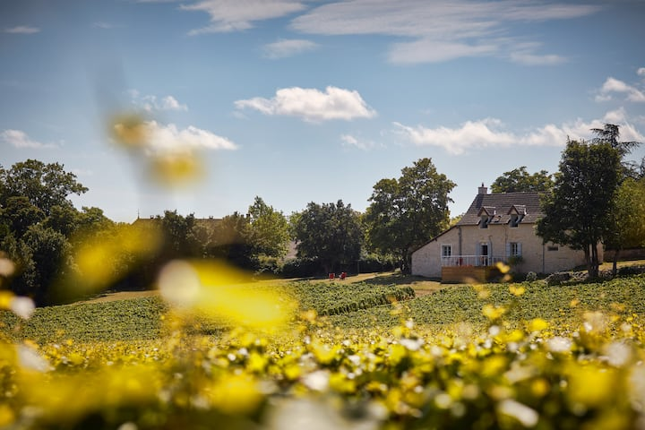 Your House in the Heart of the Vineyards