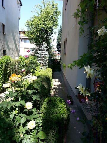 Oasis near airport - Sarajevo - Haus