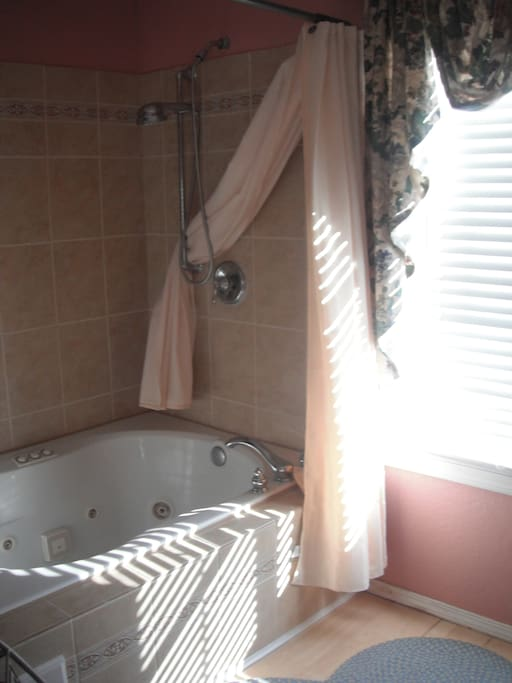 Jacuzzi bathtub big enough for two!