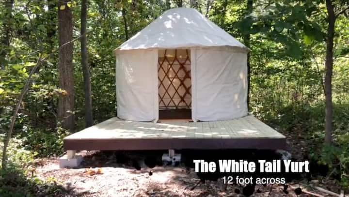 The White Tail Yurt