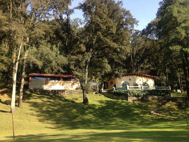 ¡Rento una increíble cabaña en Tlazala!