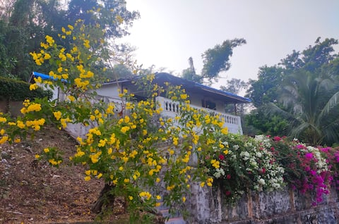 Full A/C Bungalow Near Revdanda, Alibag & Kashid