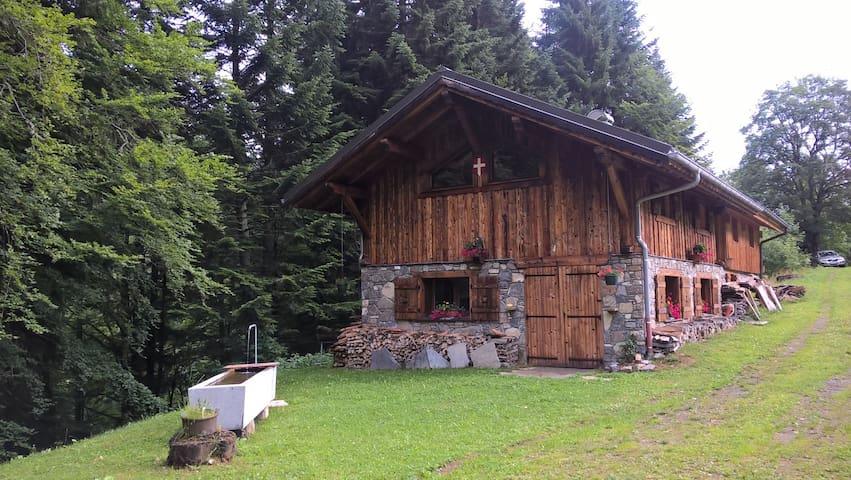 Chalet d'Alpage authentique
