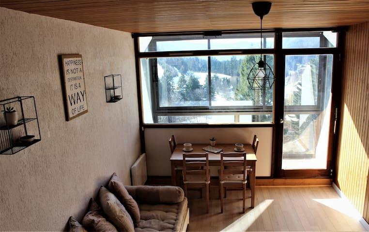 Studio sous les pistes avec vue sur la vallée