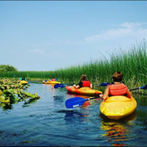 AREA ACTIVITIES: Kayak along the Upper Klamath Canoe Trail with 15,000 acres of freshwater marsh.  Paddling these calm waterways is a treat you should not miss!  Birds, beaver lodges and beautiful views are highlights.  Book a guided tour through ROE Outfitters onsite at the Running Y Ranch.