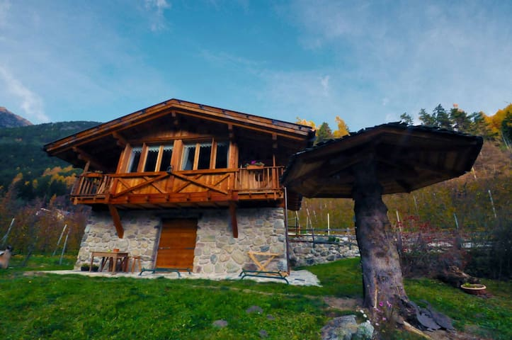 Chalet a Livo per 4 persone ID 242 - Cis - Pis