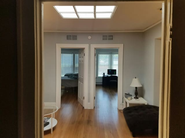 Big apt across from Rosie O'Grady's w/ skylight! - Ferndale - Apartment
