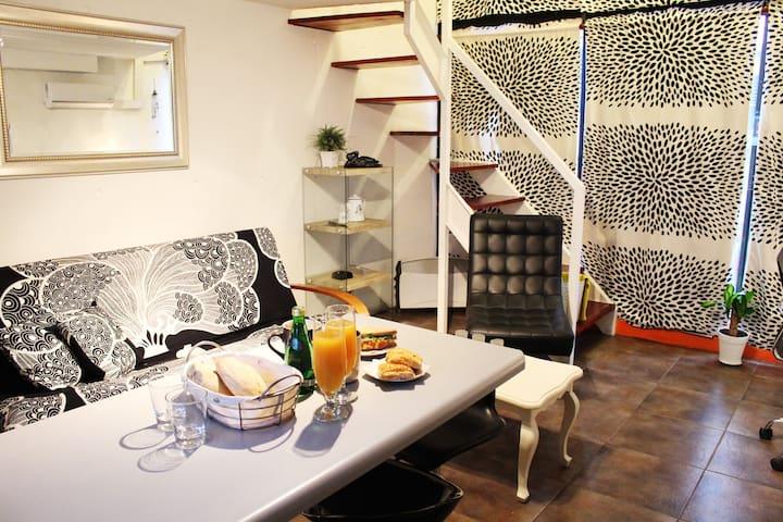 Luxury Loft in Plaza Brasil/Santiago/Chile