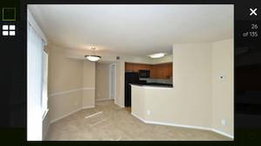 1 bed/1 bath near breweries, wineries, and D.C.! - Leesburg - Wohnung