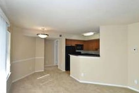 1 bed/1 bath near breweries, wineries, and D.C.! - Leesburg - Apartment
