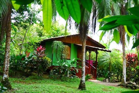 Caribbean House - Cahuita