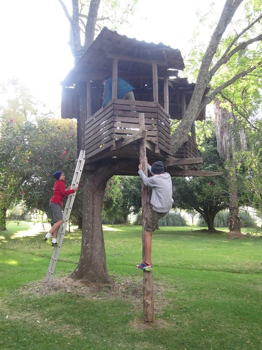 Casita del árbol y tirolesa.  Tree house with zip-line.