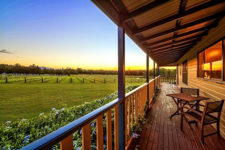 La Vigna Estate Homestead / Vineyard