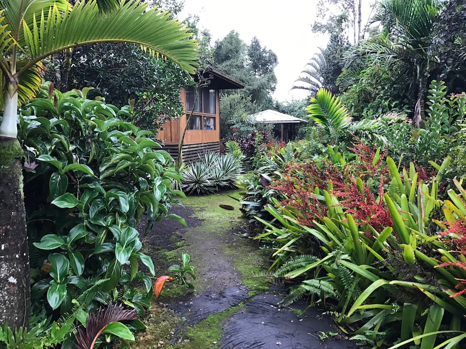 Nestled in the jungle and away from the street.