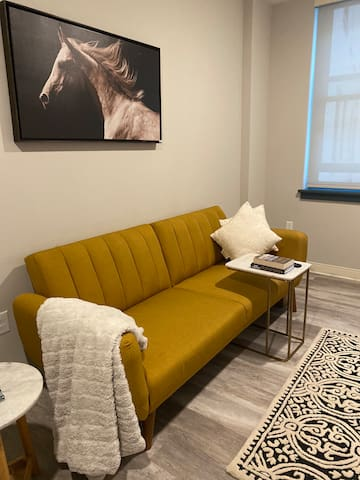 Cozy fully furnished apartment