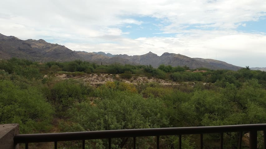Catalina Mountain View Oasis - Tucson - Daire