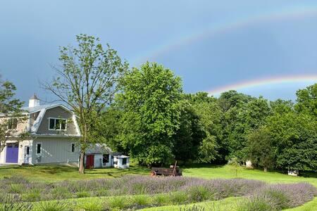La Soledad Lavender Farm on the Potomac