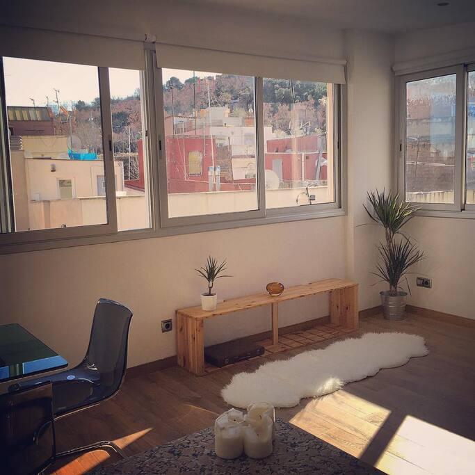 Living Room 90° Windows / Sunlight all day